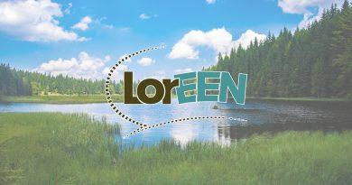 LorEEN : un site internet pour soutenir le travail en réseau