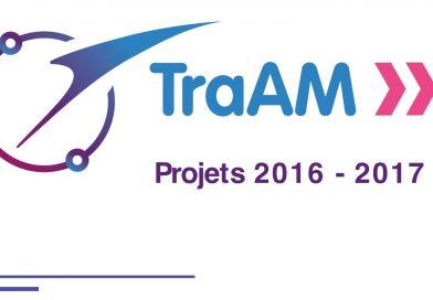 Synthèse des travaux académiques mutualisés (TraAM)