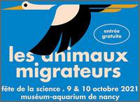 Animaux migrateurs